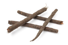 Fresh black salsify Stock Image