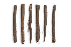 Fresh black salsify in a row Stock Photo