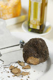 Fresh black truffle Royalty Free Stock Photo