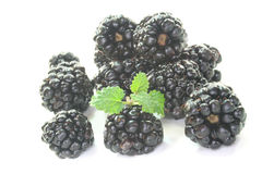 Fresh blackberries Stock Photos