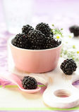Fresh Blackberries Royalty Free Stock Image