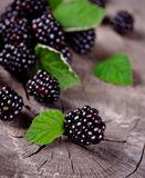 Fresh Blackberries Royalty Free Stock Images