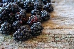 Fresh Blackberries. Fresh picked blackberries on a wood textured background Royalty Free Stock Photo