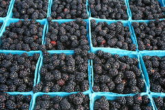 Fresh blackberries. Freshly picked blackberries, offered for sale at a farmers market Royalty Free Stock Image