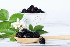Free Fresh Blackberries Royalty Free Stock Images - 92561019