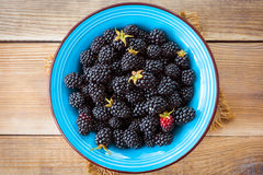 Fresh blackberries in blue ceramic bowl on wooden background in rustic style. Top view Royalty Free Stock Photography