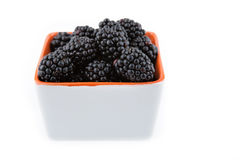 Fresh blackberries in bowl Royalty Free Stock Photography