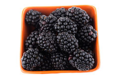 Fresh blackberries in bowl Stock Images