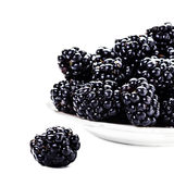 Fresh Blackberries in a bowl isolated on white. Background, close up. Summer berries, selective focus, macro Royalty Free Stock Photo