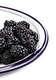 Fresh blackberries in a bowl isolated on white Stock Photos