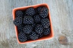 Fresh blackberries in bowl Stock Image