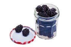 Fresh blackberries Stock Image