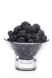 Fresh blackberries Stock Photography