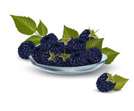 Fresh blackberries with leaves in glass bowl Royalty Free Stock Photography
