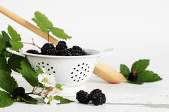 Fresh Blackberries 2 Royalty Free Stock Photo