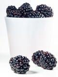 Fresh blackberries Royalty Free Stock Photos