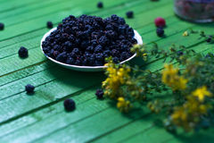 Fresh blackberries on a wooden green background. Stock Photos