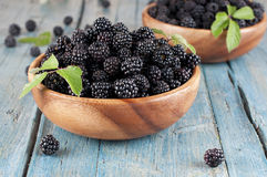 Fresh  blackberry. Sweet fresh  blackberry in the wood bawl Stock Photography