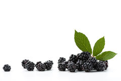 Fresh Blackberry Royalty Free Stock Photos