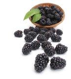 Fresh blackberry in basket Royalty Free Stock Photos