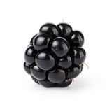 Fresh blackberry berry isolated on white Stock Images