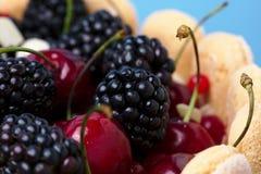 Fresh blackberry and cherry cake Stock Photography