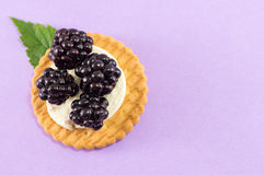 Fresh blackberry cookies royalty free stock photo