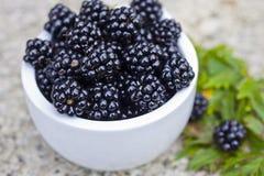Fresh blackberry. Fresh fruits, healthy food Stock Image
