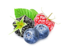 Fresh blackberry, raspberry, blueberry berries. Fresh ripe blackberry, raspberry, blueberry berries with leaf isolated on white background. Design element for Royalty Free Stock Image