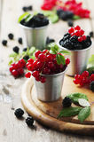 Fresh blackberry and red currant Stock Photo