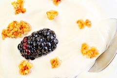 Fresh blackberry with yogurt Royalty Free Stock Image