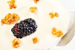 Fresh blackberry with yogurt Royalty Free Stock Image