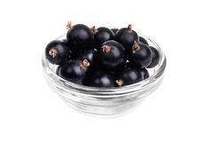 Fresh blackcurrant in glass bowl  isolated on  white Royalty Free Stock Images