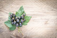 Fresh blackcurrant on leaves on the wooden board Stock Photos
