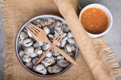 Fresh blanched cockle clams with dipping sauce. Fresh blanched cockle clams with spicy dipping sauce Stock Image