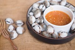 Fresh blanched cockle clams. With spicy dipping sauce Royalty Free Stock Image