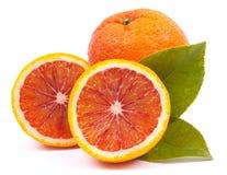 Fresh blood oranges. On white ground royalty free stock photos