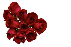 Fresh bloom love shape of red roses. royalty free stock image