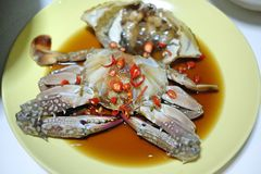 Fresh blue crab with Soy Sauce Royalty Free Stock Photo