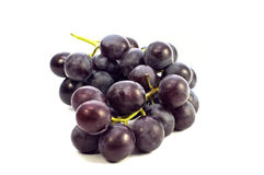 Fresh blue grape Stock Photography