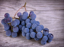 Fresh blue grape Stock Photo
