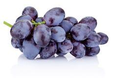 Free Fresh Blue Grapes Isolated On White Background Stock Image - 62244781