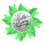 Fresh blue Hello Spring. Fresh text Hello Spring , vector illustration Stock Photos