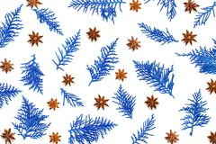 Fresh blue pine leaves with anise star herb , the Oriental Arbo. Fresh blue pine leaves with anise star herb , Oriental Arborvitae, Thuja orientalis background Stock Photography