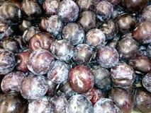 Fresh blue plums close-up. Close-up Stock Photos