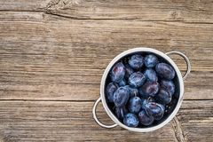 Fresh blue plums in rustic colander on old wooden table. Organic food. Top view, copy space Stock Photo