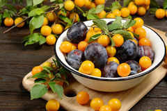 Fresh blue yellow plums in metal bowl on dark wooden table. Royalty Free Stock Photos