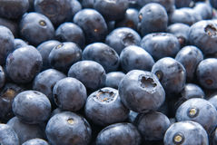 Fresh blueberries Stock Photography
