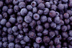 Fresh blueberries. Bunch of fresh blueberries background Stock Images