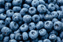 Fresh blueberries background Stock Images